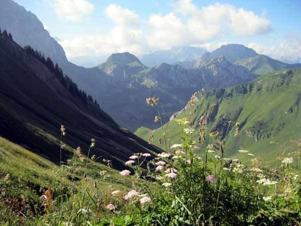 Un malade de Parkinson sur les sentiers des Alpes