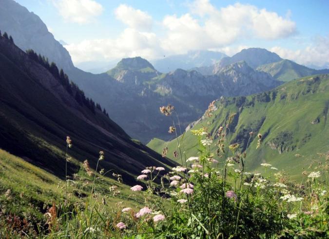 Le sentier de Grande Randonnée GR® 5 vedette d'une série TV belge