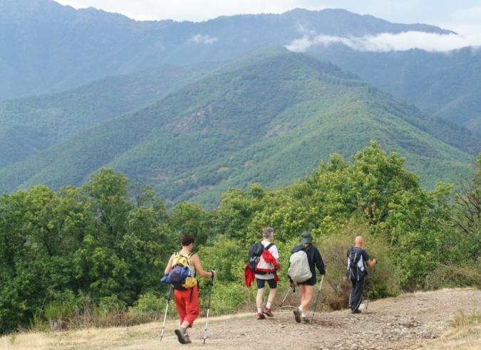 Sur le mont Aigoual, le sentier des 4000 marches