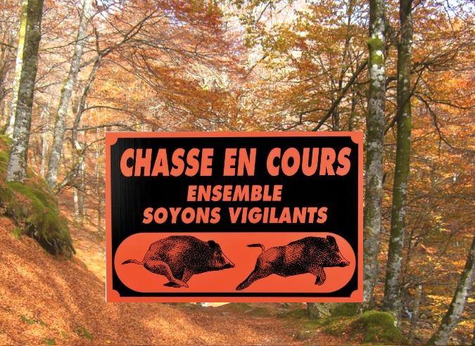 Une application localise les chasseurs en Isère