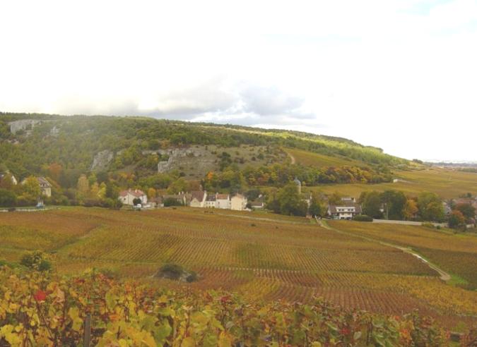 Le sentier des Vignes au pays du Crémant de Bourgogne