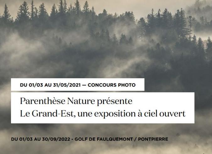 Festival Parenthèse Nature : l'image pour sensibiliser à la préservation de la biodiversité