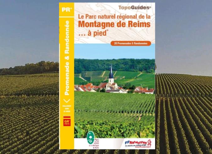 Les forêts de la Montagne de Reims dans la Marne