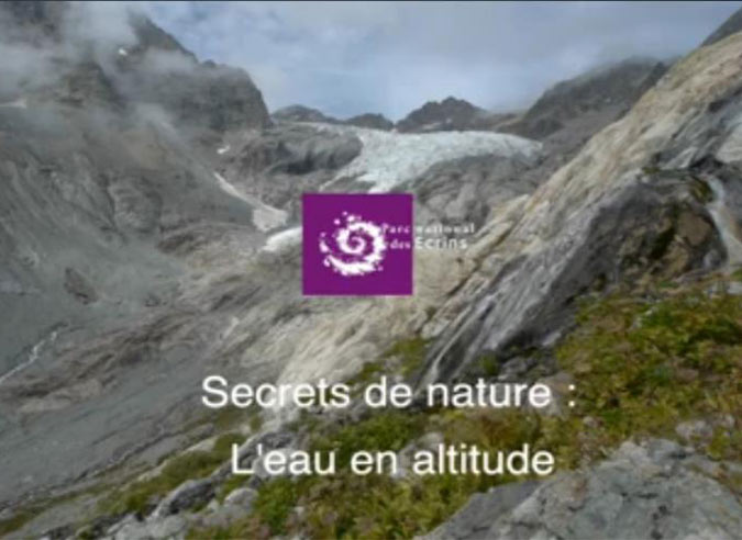 Secret-de-nature-«-L'eau-en-altitude-»