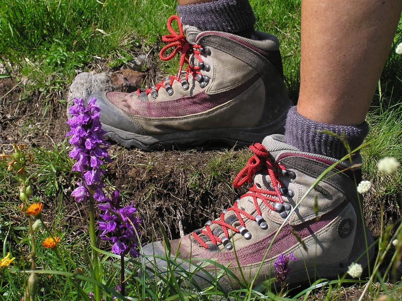Comment bien choisir ses chaussures de randonnée